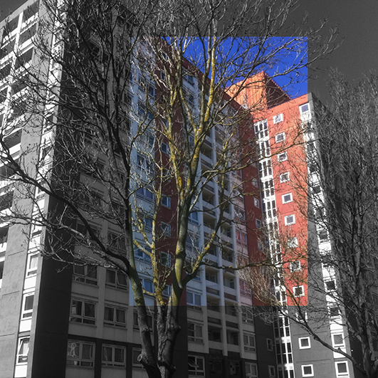 Trees Before Buildings 9
